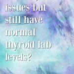 normal thyroid hormones, hormonal acne and Paraguard {Q&A}